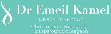 Dr Emeil Kamel